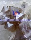 scheelite concentrate-0073