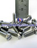 molybdenum bolt-0005