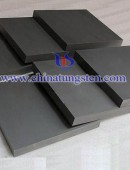 Tungsten Carbide Plate-0045