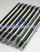molybdenum electrode-0004
