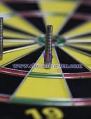 High specific gravity tungsten alloy the dart tube (70W 7.9448.30)