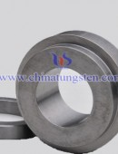 Tungsten Carbide Structural Part-0025