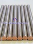 Tungsten Rod-0013