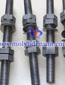 molybdenum nut-0012