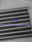 Tungsten Carbide Rod - 0001