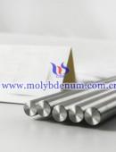TZM alloy-0019