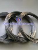 Tungsten wire --0049