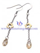 Tungsten steel earrings -0042
