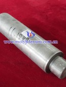 glass molybdenum electrode-0010