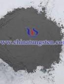 tungsten powder - 0022