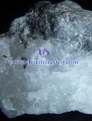 scheelite concentrate-0066