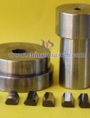 Tungsten Carbide Drawing Dies-0105