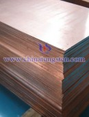 tungsten copper plate-0080
