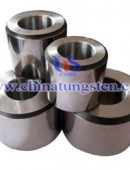 Tungsten Carbide Drawing Dies-0022