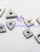 Tungsten Carbide Cutting Tools-0142
