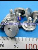 molybdenum bolt-0004