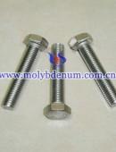 molybdenum bolt-0001