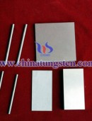 Silver tungsten alloy -0173