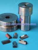 Tungsten Carbide Drawing Dies-0023